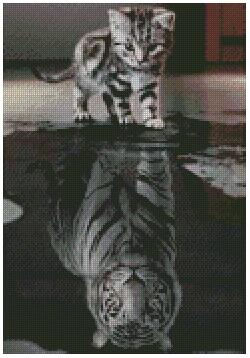 Kitten Reflection as a Tiger 22X32cm eound drill