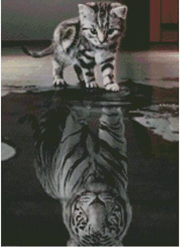 Kitten Reflection as a Tiger 32X46cm eound drill